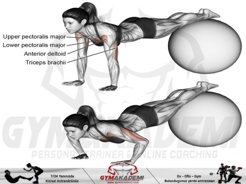 Stability ball decline push-up