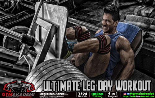 Ultimate Leg Day Workout
