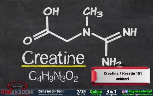 Creatine / Kreatin 101